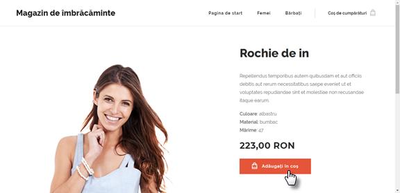 Magazinul online prin ochii unui client