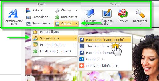 Vložení Facebook Page Plugin