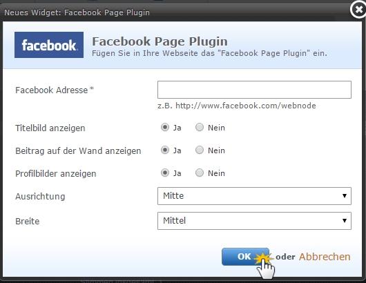 Adresse der Facebook-Page einfügen