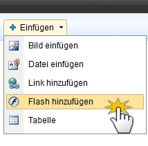 Flash Datei