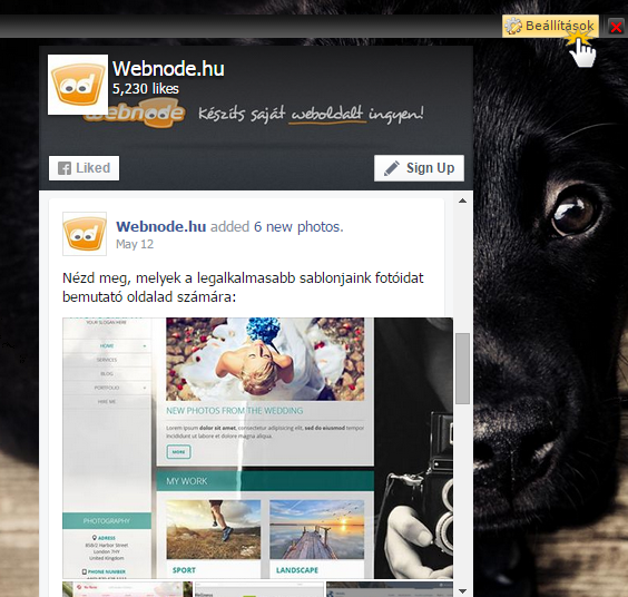 "Adj Facebook ""Page Plugin""-t oldaladhoz"