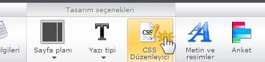 CSS düzenleyici